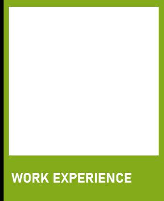 work-ex